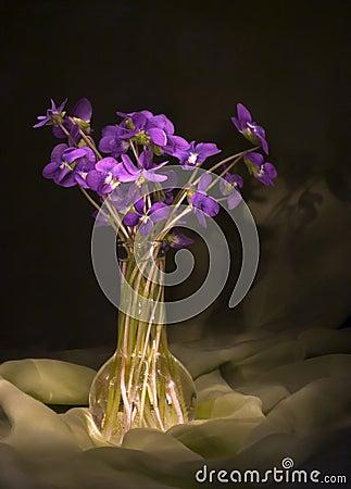 Violets still life
