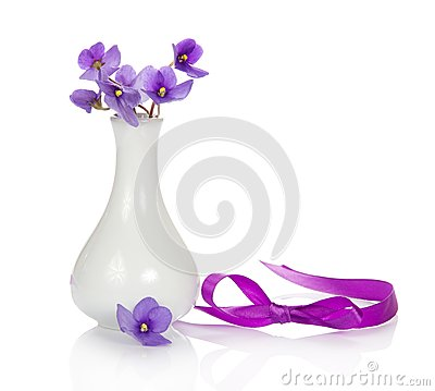 Violets in vase and ribbon