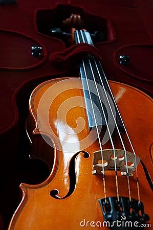 Free Violin Stock Image - 285991