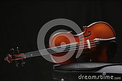 Violin_6