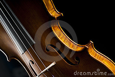Violin on black