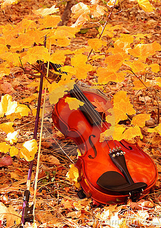 Violin and Bow in Autumn