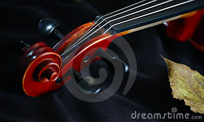 Violin classic string instrument