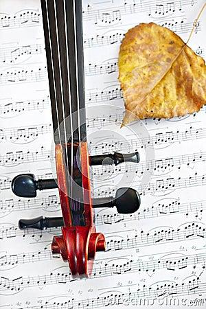 Violin classic string instrument