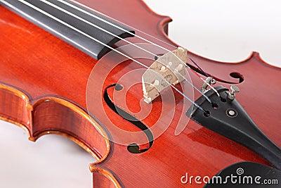 Violin classical music instrument