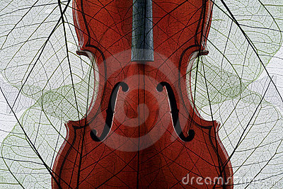 Violin covered with autumn leaves