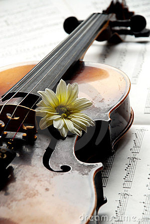 Violin,flower on music paper