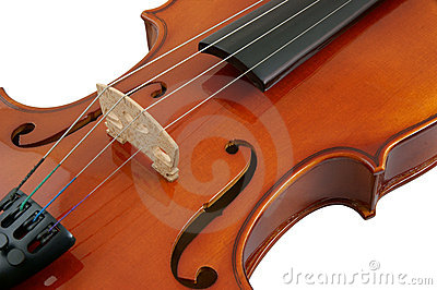 Violin isolated