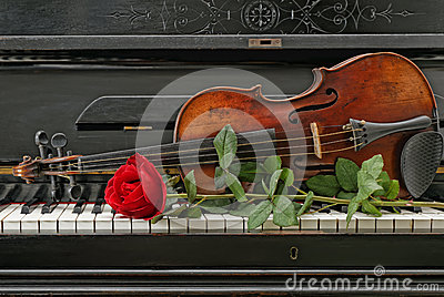 Violin piano rose