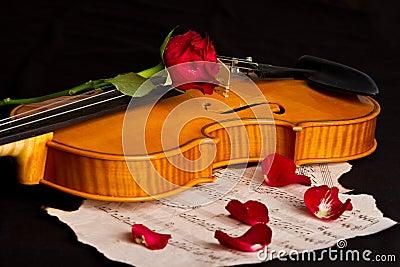 Violin sheet music and rose