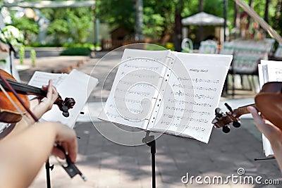 Violinist on wedding ceremony