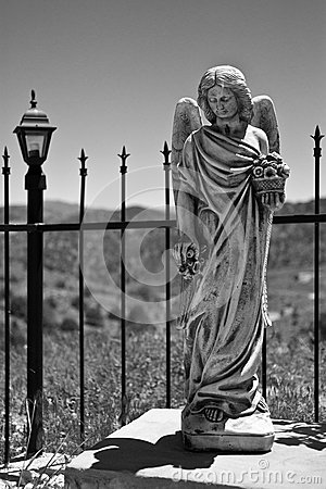 Virginia City Angel