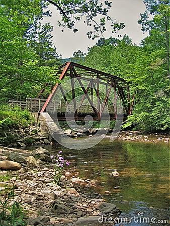 Free Virginia Creeper Trail Royalty Free Stock Image - 106113096