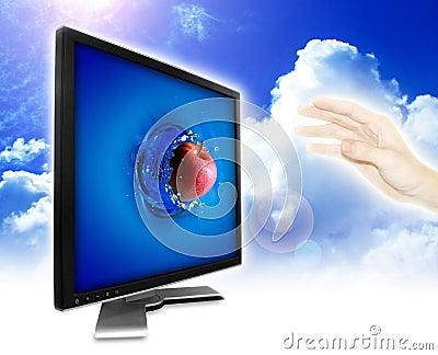 Virtual and real