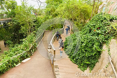 Eden Project Cornwall Editorial Stock Photo