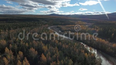 Vista aérea da floresta perto da autoestrada Dempster no dia do outono Dempster Highway, Yukon, Canadá video estoque