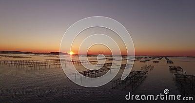 Vista aérea de un campo de la ostra durante puesta del sol almacen de metraje de vídeo