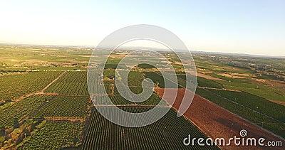 Vista aérea de un campo francés almacen de video