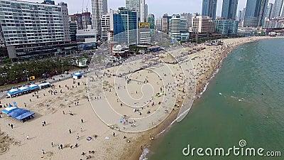 Vista aérea del Festival Haeundae Beach Sand, Busan, Corea del Sur, Asia almacen de metraje de vídeo