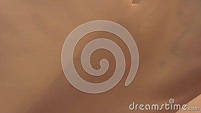 Vista aérea sobre dunas de areia no deserto de Gobi video estoque