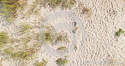 Vista aerea dall'alto in basso delle dune bianche della spiaggia di sabbia nella regione di Kiliya, Bessarabia ucraino archivi video