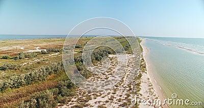 Vista aerea della linea costiera della spiaggia nella regione di Kiliya, Bessarabia ucraino stock footage