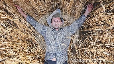 Vista de cima de jovens agricultores deitados em caules de trigo e descansando no campo de cereais Feliz agrônomo macho que se põ vídeos de arquivo