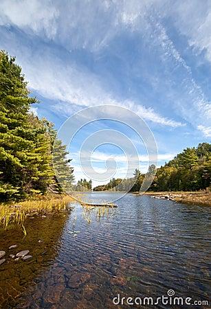 Vista del paisaje del agua del claro del lago carpenter