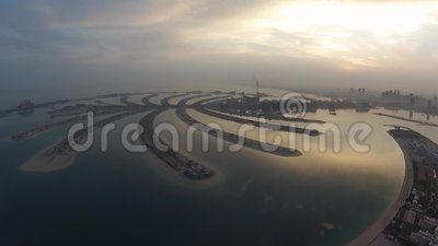 Vista della palma dall'aria nelle prime ore del mattino archivi video
