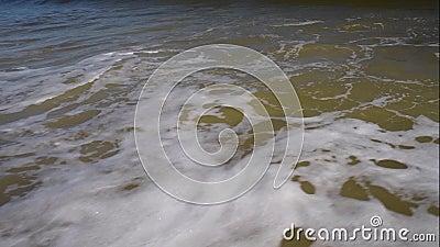 Vista sobre el Océano Atlántico, Florida metrajes
