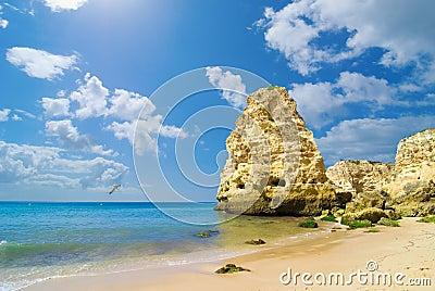 Vista sul mare della spiaggia rocciosa