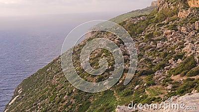 Vista superior do terreno rochoso e do mar Musgo verde, pedras, natureza, nenhum pessoa, silêncio filme