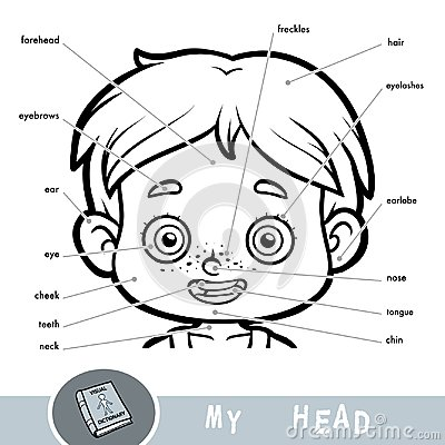 Free Visual Dictionary About The Human Body. My Head Parts For A Boy Royalty Free Stock Photography - 109022987
