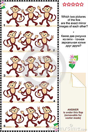 Visual puzzle - monkeys - spot mirror images