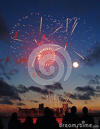 Visualizzazione dei fuochi d artificio