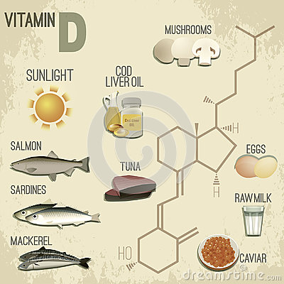Vitamin D in Food Vector Illustration