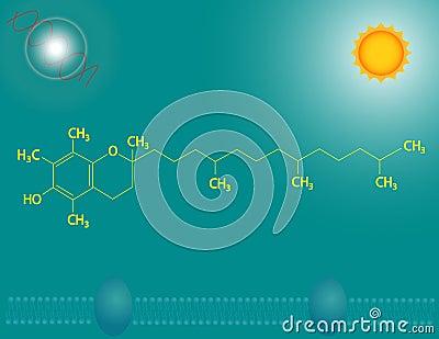 Vitamin E (tocopherol)