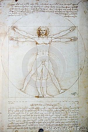 Vitruvian Man Drawing  Editorial Image