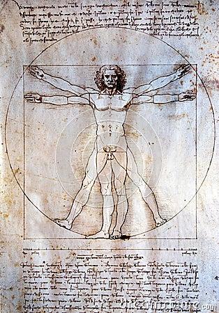 Vitruvian man - Leonardo Da Vinci Editorial Stock Photo