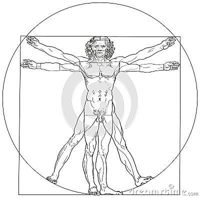 Free Vitruvian Man Leonardo Da Vinci Stock Images - 32987994