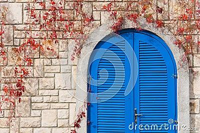 Vivid Blue door