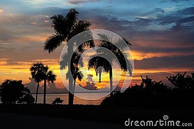 Vivid tropical sunset horizontal