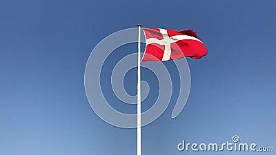Vlag van Denemarken stock video