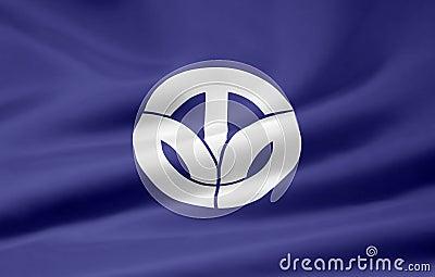 Vlag van Fukui - Japan