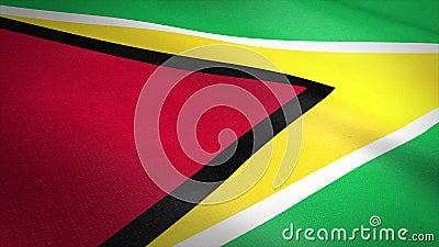 Vlag van Guyana Wavevlag met een zeer gedetailleerde structuurstructuur, naadloos loopbare video Naadloze lus met zeer hoge royalty-vrije illustratie