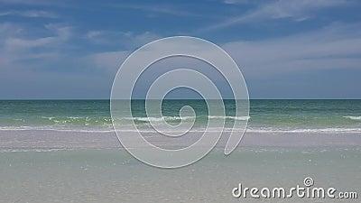 Vlieg in video van het strand van Florida stock video