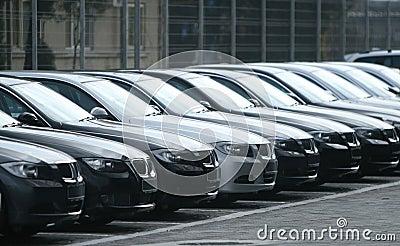 Vloot van auto s