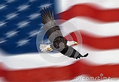 Vôo da águia calva na frente da bandeira americana