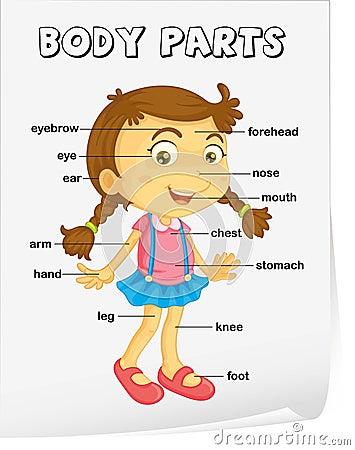 Vocabulary Worksheet Stock Photo - Image: 32202270