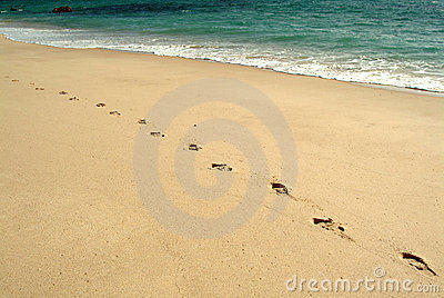 Voetafdrukken, die in het strand lopen